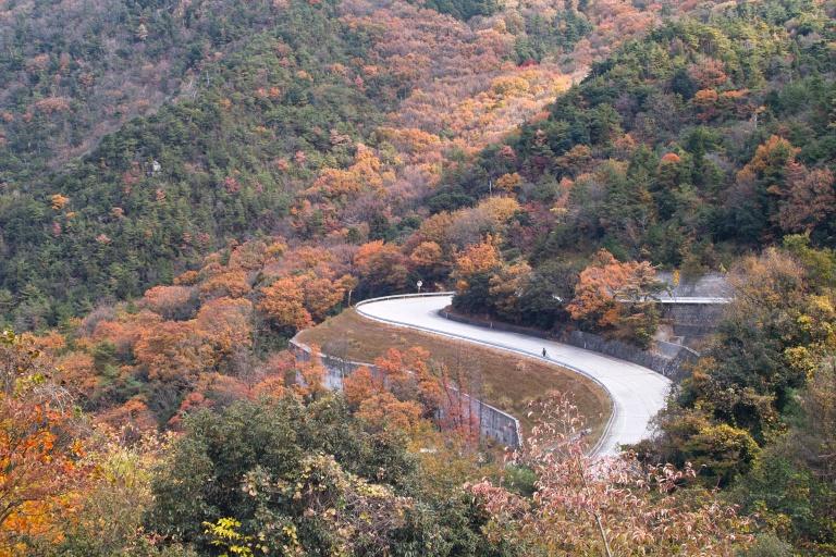 小豆島サイクリング'12晩秋